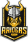 Split Raiders logo