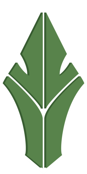 Havu Csgo